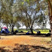 CAMPI SALENTINA (PUGLIA)